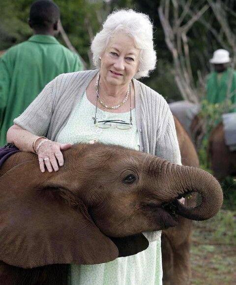 """â™"""" Daphne Sheldrick with baby elephant..She started a sanctuary for elephants in Africa. Babies left motherless, by horrible poachers, are raised here, and released After two years. She is magnificent!!"""