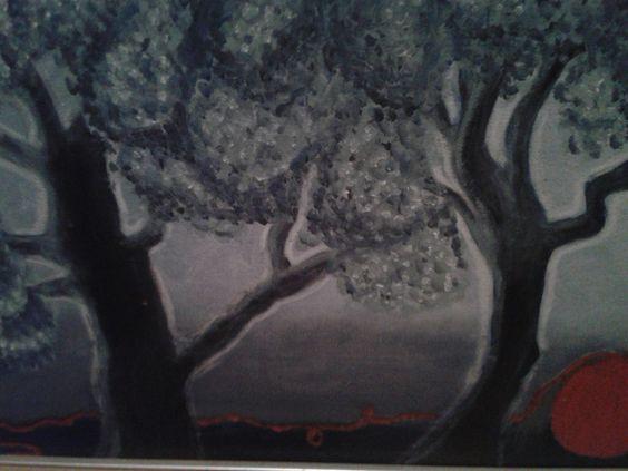 Olivenbäume nachts