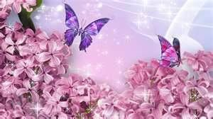 lilacs - Bing Images