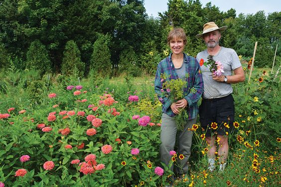 North Fork Flower Farm blooms in Orient...