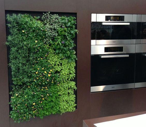 Gardens, Herbs Garden And In Kitchen On Pinterest