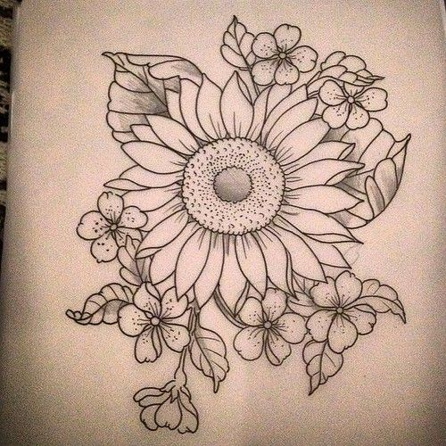 Flowers Drawings No Show For This Today Any Takers