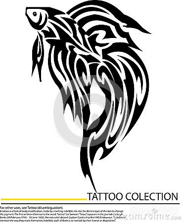 Betta Fish Tattoo | peixes-de-combate-do-betta-da-tatuagem-isolados-no-fundo-branco ...