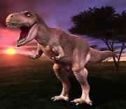T-rex specimen is a she!