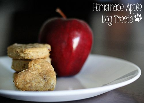 Homemade Apple Dog Treats