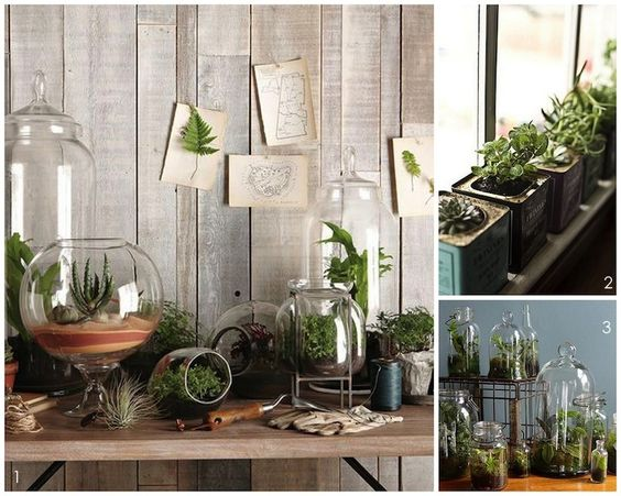 Glasgefäße bepflanzt