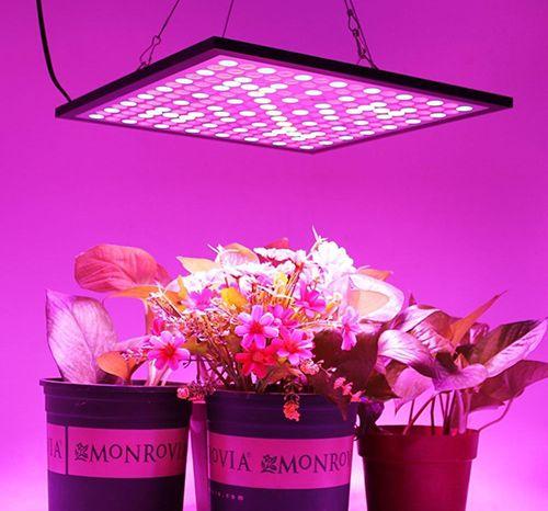 Best Led Grow Lights Reviews Grow Lights For Plants Led Grow