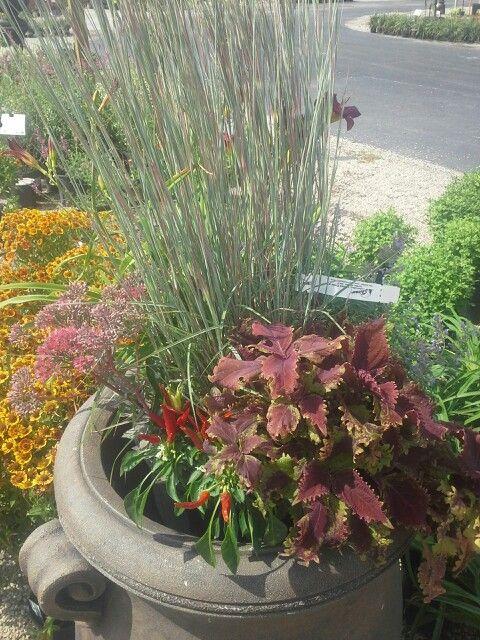 Great planter