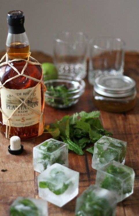 Love these square ice cubes with mint frozen inside! Perfect for a julep.: