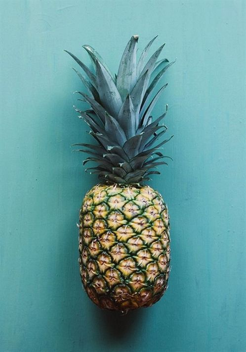 Can You Get Fat From Fruits And Vegetables Pin On Still Life