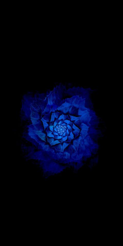 Bluish Flower Black Amoled Wallpaper 4k Ultra Hd Iphone Wallpaper Images Wallpaper Ultra Hd 4k Wallpaper