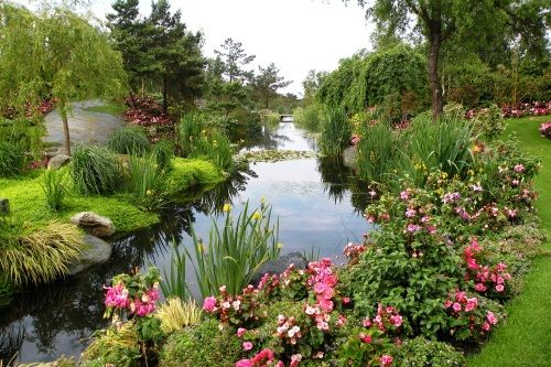 Stavanger - Tropical Flora of Norway - Enjoy a blossoming garden of exotic plants on the island of Sør Hidle, described as the World's northernmost palm tree island.