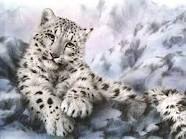 ?? alguien ha visto un lindo gatito
