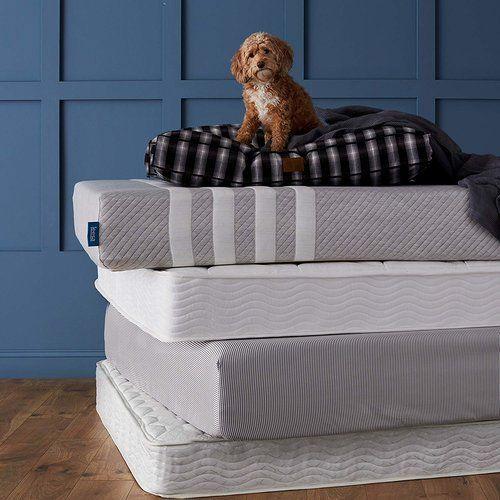 Casper Vs Leesa Vs Purple Purple Mattress Casper Vs Purple Dog Bed Furniture