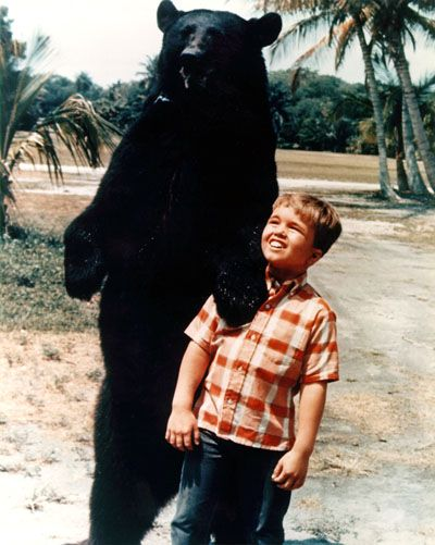 Gentle Ben (1967–1969) The adventures in the Florida Everglades of a game warden, Tom Wedloe (Dennis Weaver), his wife Ellen (Beth Brickell), their son Mark (Clint Howard), and Mark's tame bear Ben.