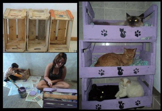 Que belas casinhas para os bichanos...e tão fáceis de fazer...;)  Veja mais em http://www.comofazer.org