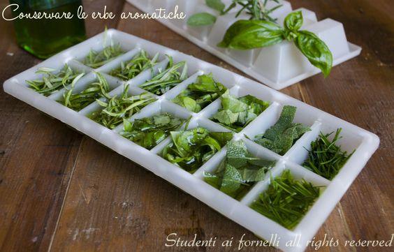 conservare le erbe aromatiche rosmarino salvia erba cipollina basilico timo nei cubetti di ghiaccio