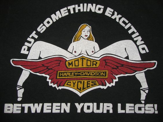 Put Something Exciting Between Your Legs Harley Davidson