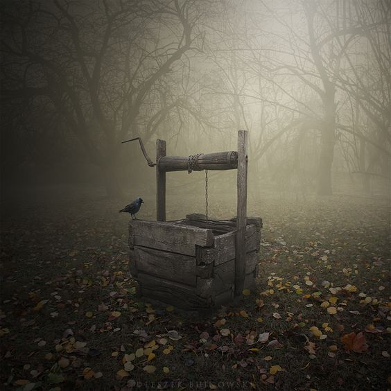 Well by Leszek Bujnowski - Love this photo. ♥: