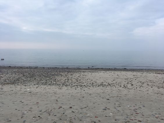 Балтийский берег. Фото: Vladimir Shveda