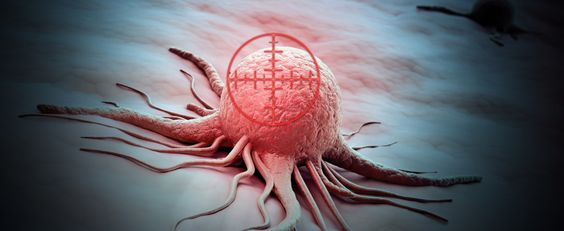 Genentech Discloses Promising Data on Perjeta in Neoadjuvant Treatment For Specific Breast Cancer Patients Breast Cancer News