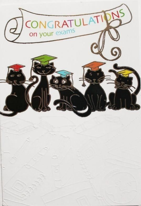 Congratulations on your exams card, suitable for male or female, cats, brand new