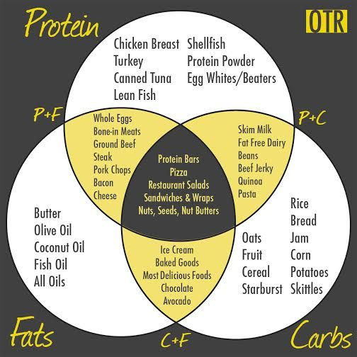 Beginner's Macronutrient Venn Diagram!