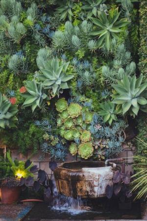 Parede vertical jardim suculenta por ortoz carmen