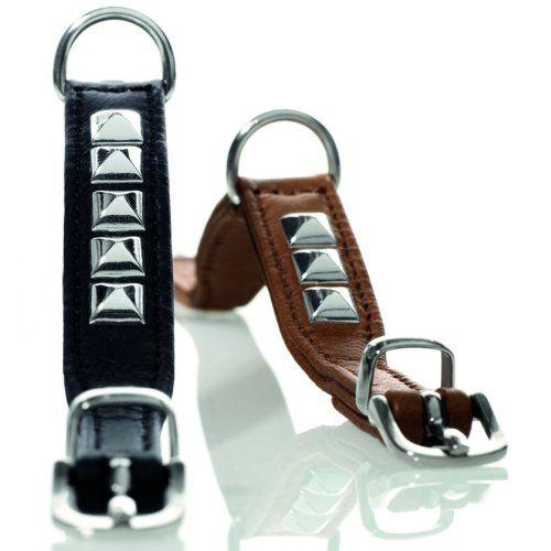 colliers pour chien pas cher solde discount colliers chien bullam pinterest. Black Bedroom Furniture Sets. Home Design Ideas