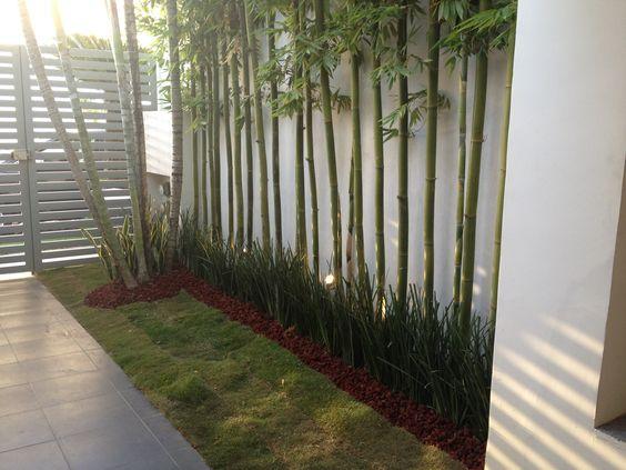 Jard n sencillo hecho con bambus lirios y piedra de - Jardin de bambu talavera ...