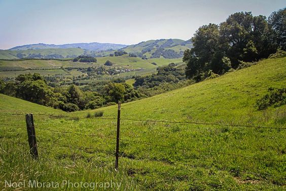 A scenic drive through Marin County and Point Reyes in Northern California - Travel Photo Discovery #marin #California #PointReyes