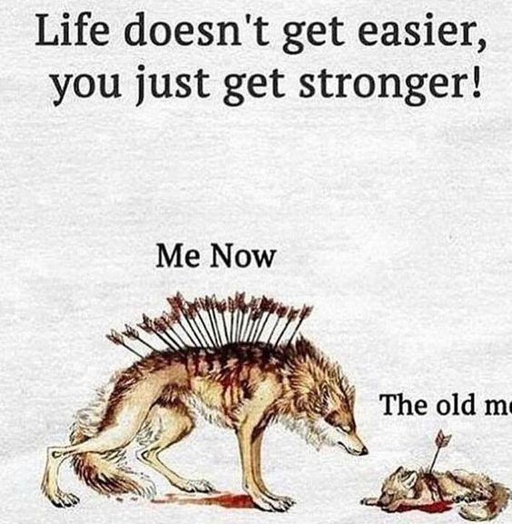 I am that beast!