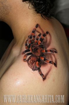 28.Black-Widow by carloxangarita, via Flickr