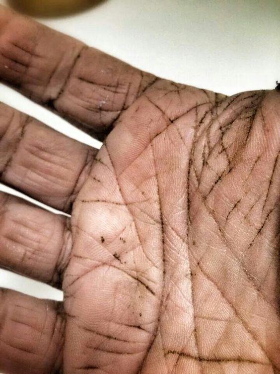 Hands of a florist