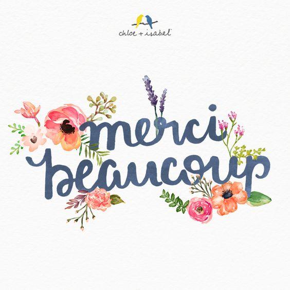Newsletter du 20 novembre 2018 du Jardin du Rêve 1b9cb693d4c1d41c9bfcca6f3af41b77