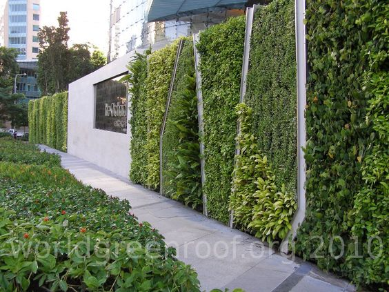 Living in a concrete jungle meh speed concept for Living plant walls