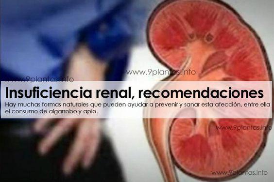 Riñones, insuficiencia renal | 9Plantas