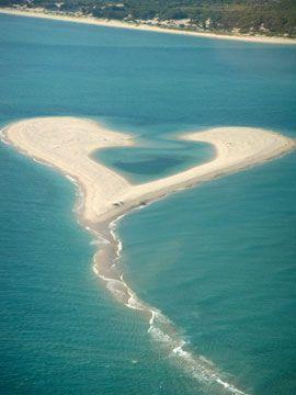 Heart: