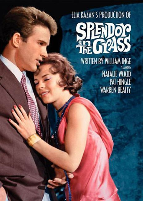 'Splendor in the Grass'  Warren Beatty & Natalie Wood   1961.  A brilliant and heartbreaking film. They just don't make movies like this anymore.
