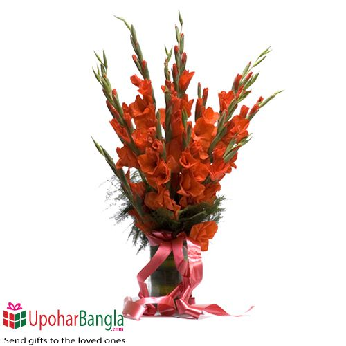Red Gladiolus Flower In 2020 Beautiful Bouquet Of Flowers Order Flowers Flowers