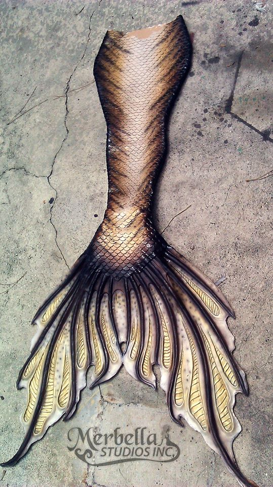 """Full silicone tail by Mermaid Raven of Merbella Studios Inc. Inspired by """"She Creature""""."""
