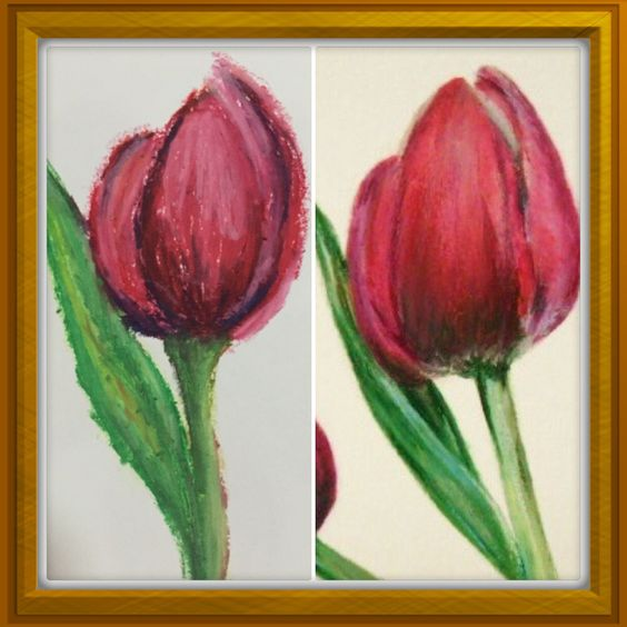 Red tulips...oil pastel on sketchpad (I did the one on the left)