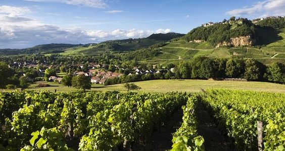 Les villages de Voiteur et Château-Chalon et Voiteur depuis les vignes | Jura, France | Crédit photo : Stéphane Godin/Jura Tourisme | #JuraTourisme