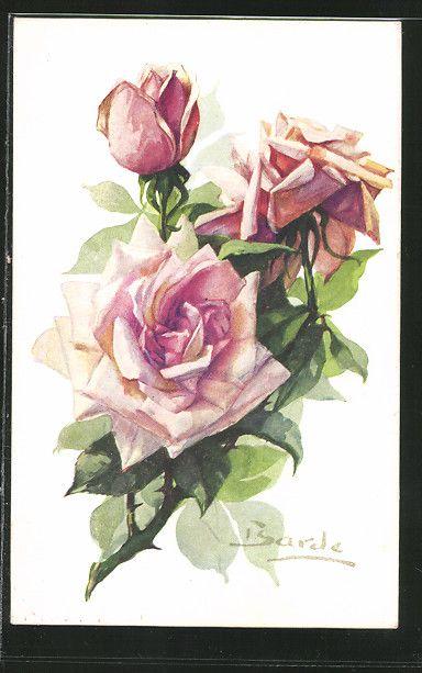 old postcard: AK Ranke mit Rosenblüten