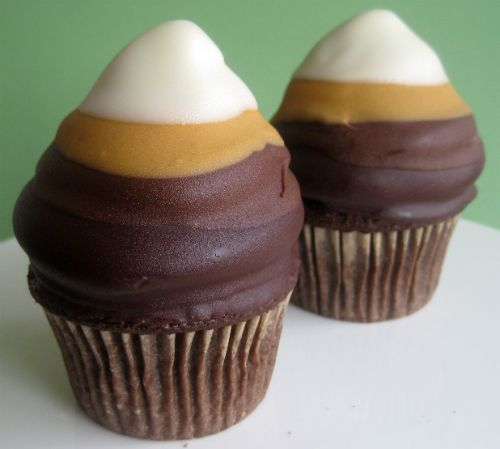 Chocolate Ombre Cupcakes | Bake It in a Cake