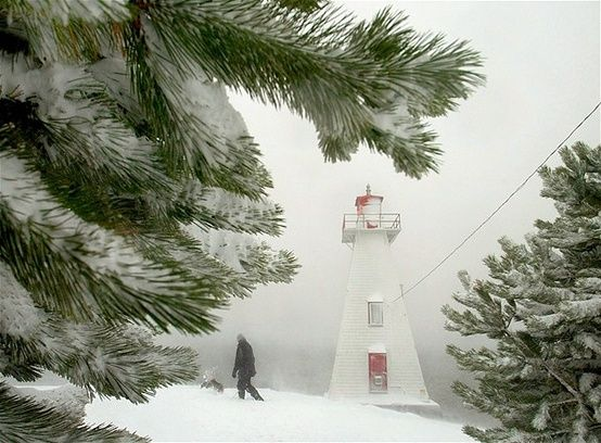A snow storm on Prince Edward Island (© Jim Young/Reuters)