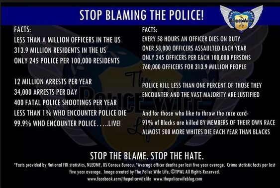 These Are The FACTS! STOP The Blame. STOP The Hate. STOP Blaming The Police.
