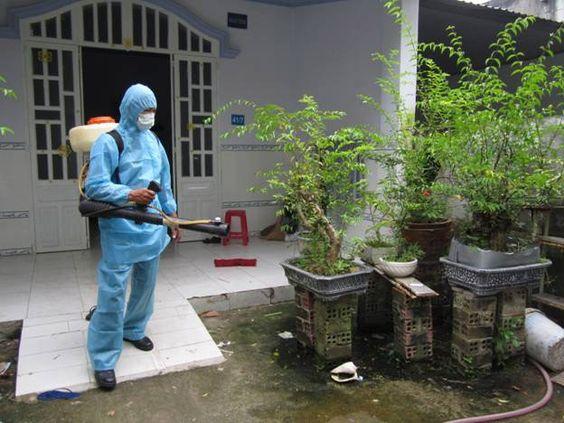 Nên sử dụng thuốc phun diệt muỗi có mùi hay không mùi?