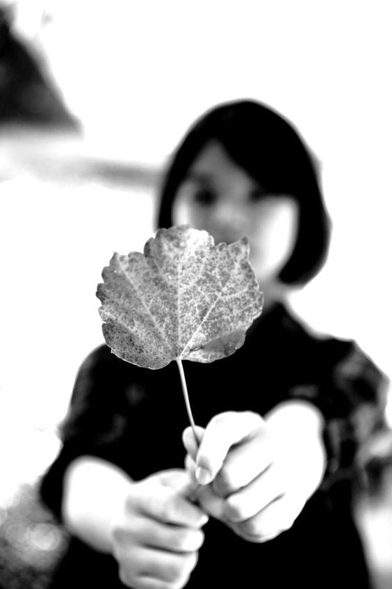 가을느낌을 만들어 보았습니다.