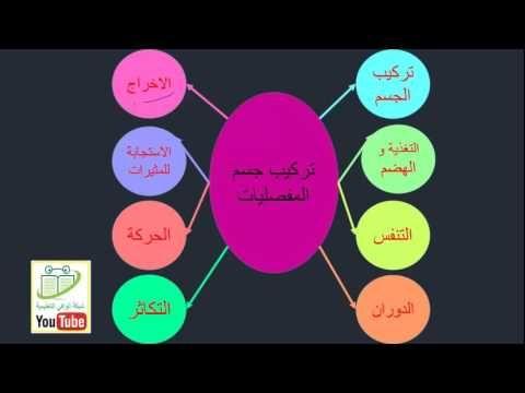 Sayeda Faiza أحياء ١ Pie Chart Chart Incoming Call Screenshot